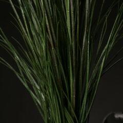 krolop-gerst-hensel-jpg-1dx-6d-canon-eos-freemask-freisteller-live-sendung-tutorial-beispiele-03